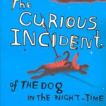 The curious incident of the dog in the night-time' by Mark Haddon - book club in madrid ciervbo blanco literary gatherings