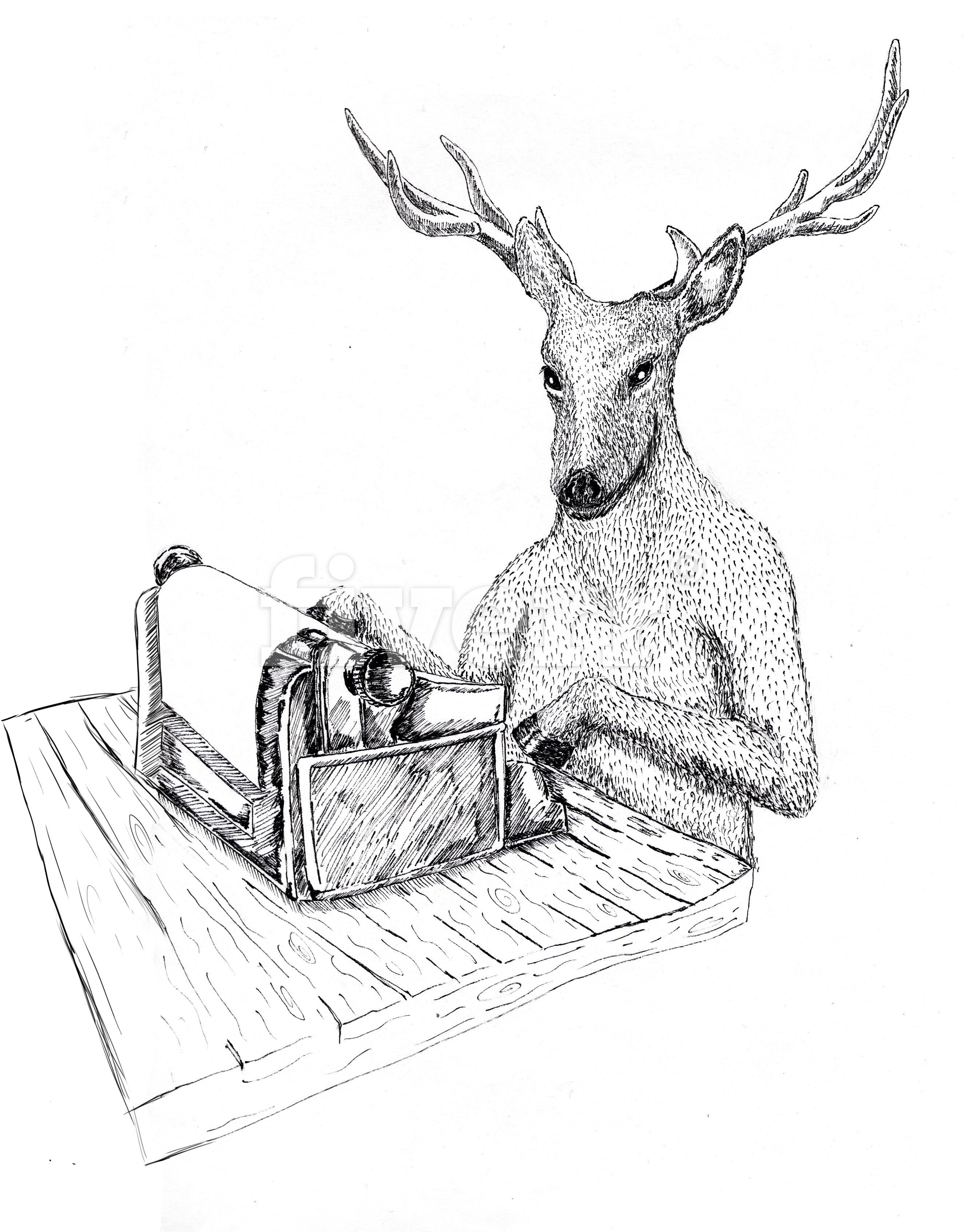 escritura creativa ciervo blanco club madrid