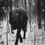 escritura creativa taller gratis madrid lobo ciervo blanco