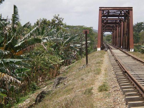 vias tren selva escritura creativa 020617